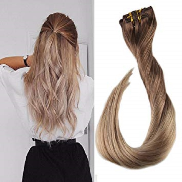 01 20 Inch Clip In Hair Extensions