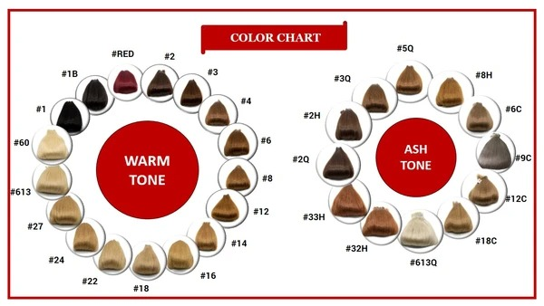 02 Wig Color Chart
