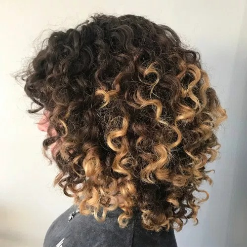 Curly Hairstyles with Highlights